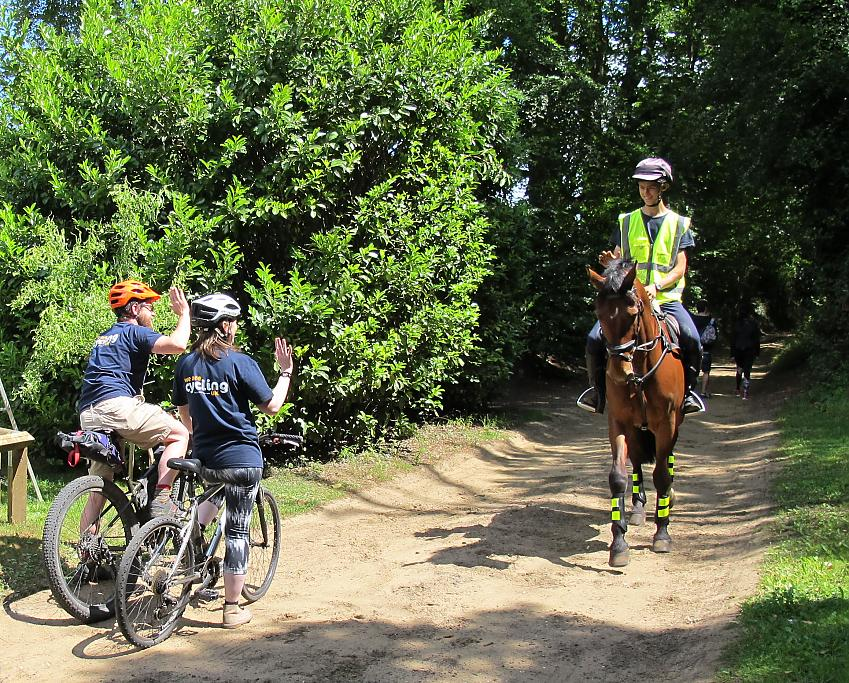 Two cyclists stop for a horse rider