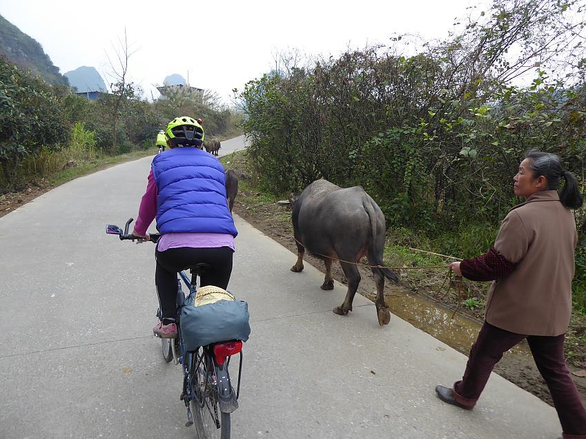 Day ride near Yangshuo