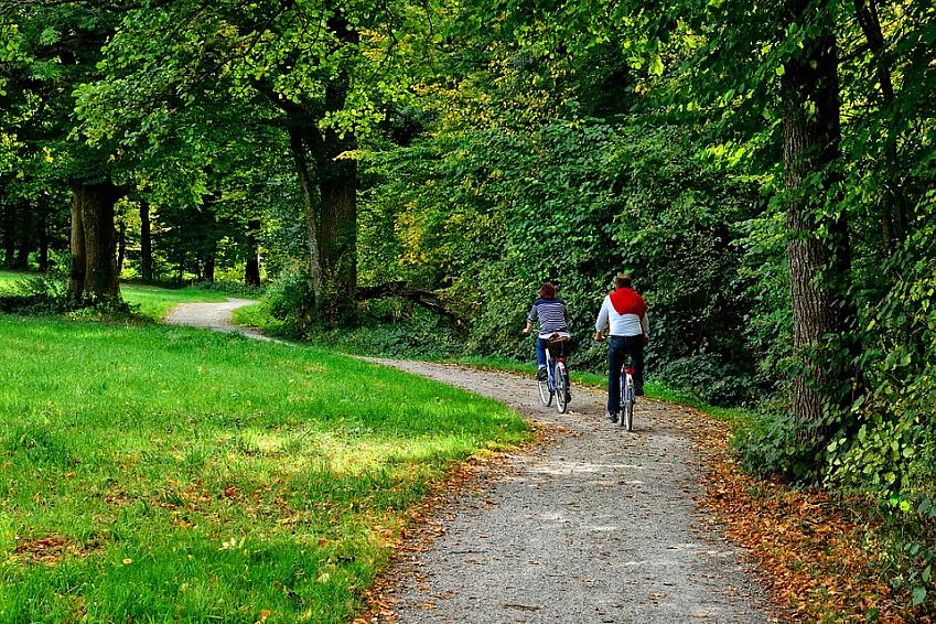 Couple cycling along woodland trail