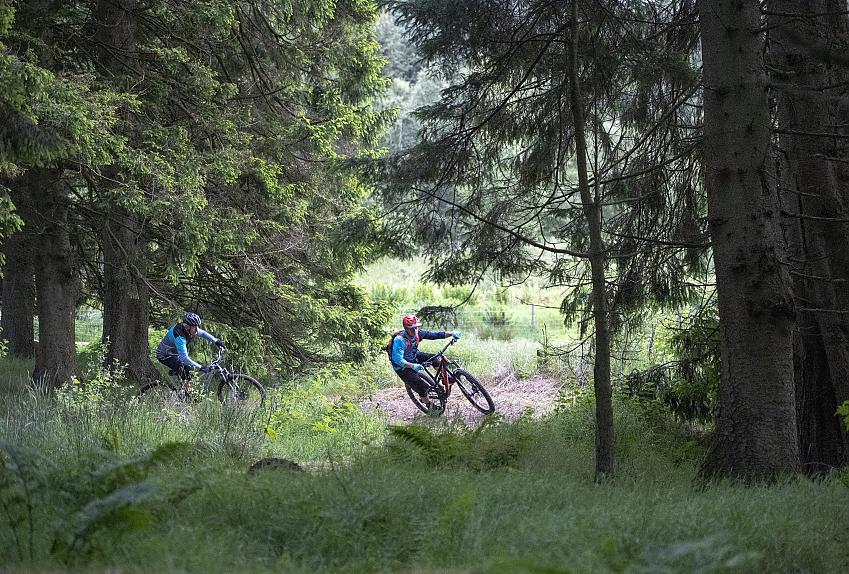 Two mountainbiker riding through Kielder Forest. Photo Joolze Dymond / Cycling UK
