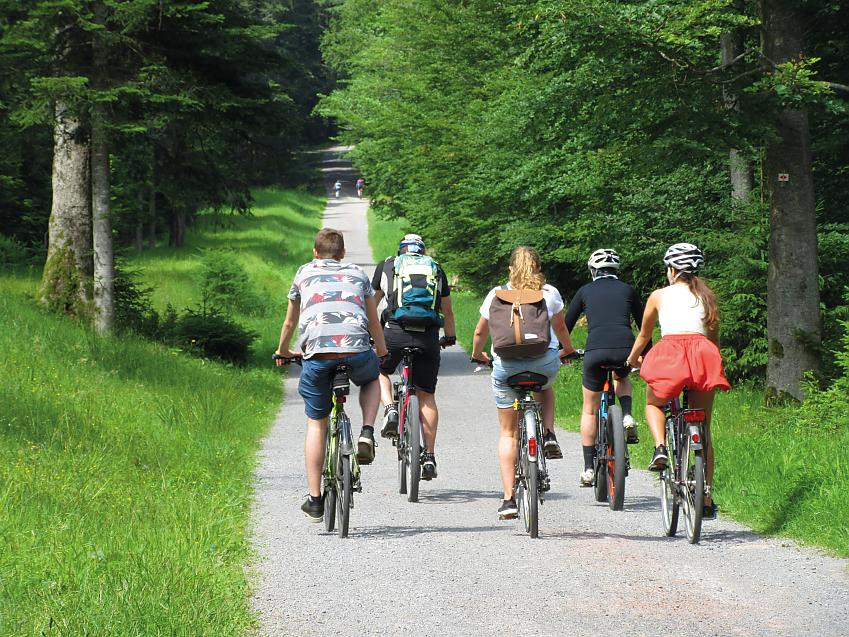A group of cyclists enjoying the forest trails