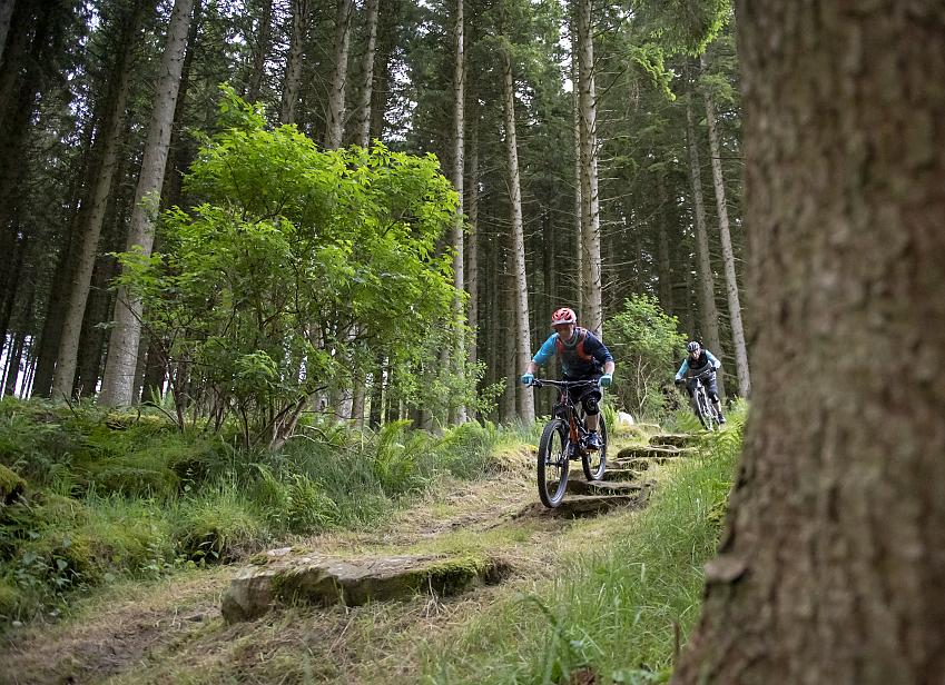 Two mountain bikers riding down stone steps on a forest trail