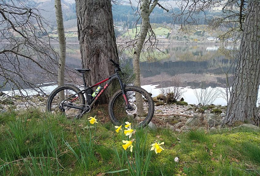 Brendan's mountain bike against a tree with Loch Ness in the background