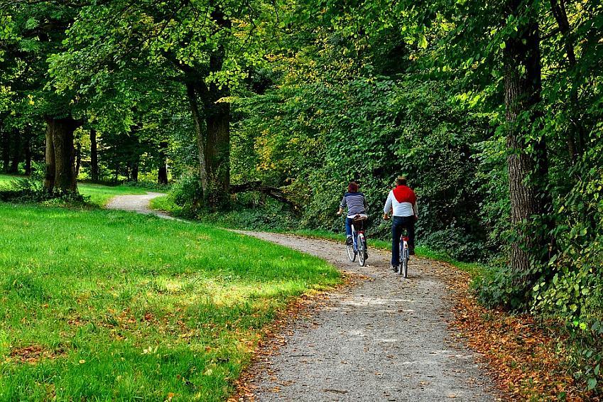Couple cycling along woodland trail