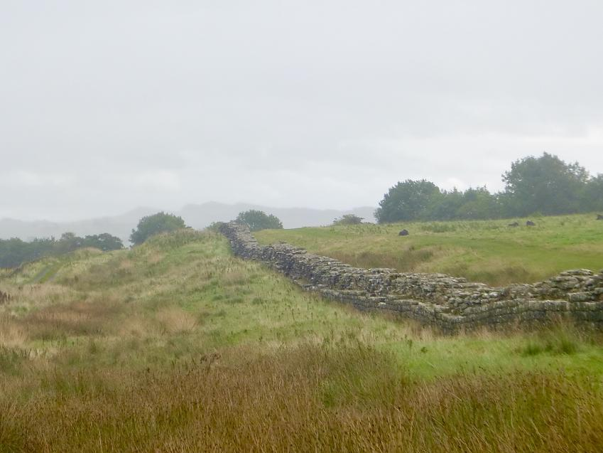Hadrian's Wall at Birdoswald. Photo by Penny Coombe.