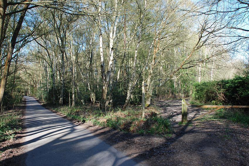 Footpath and bridleway