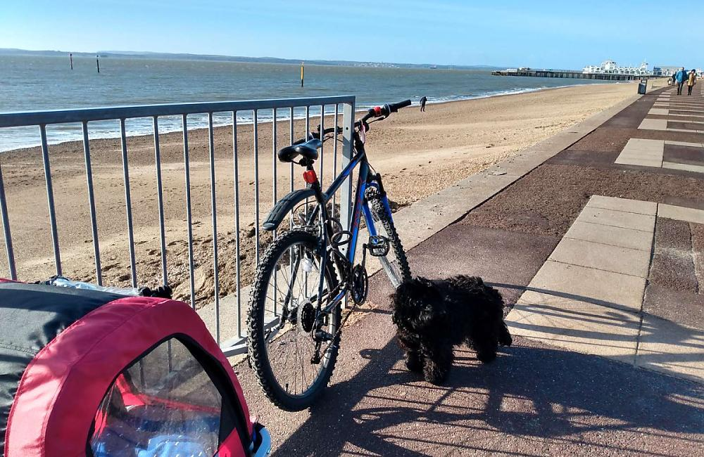 A bike leant against railings at the beach with a small dog sat on the floor and a child buggy behind the bike