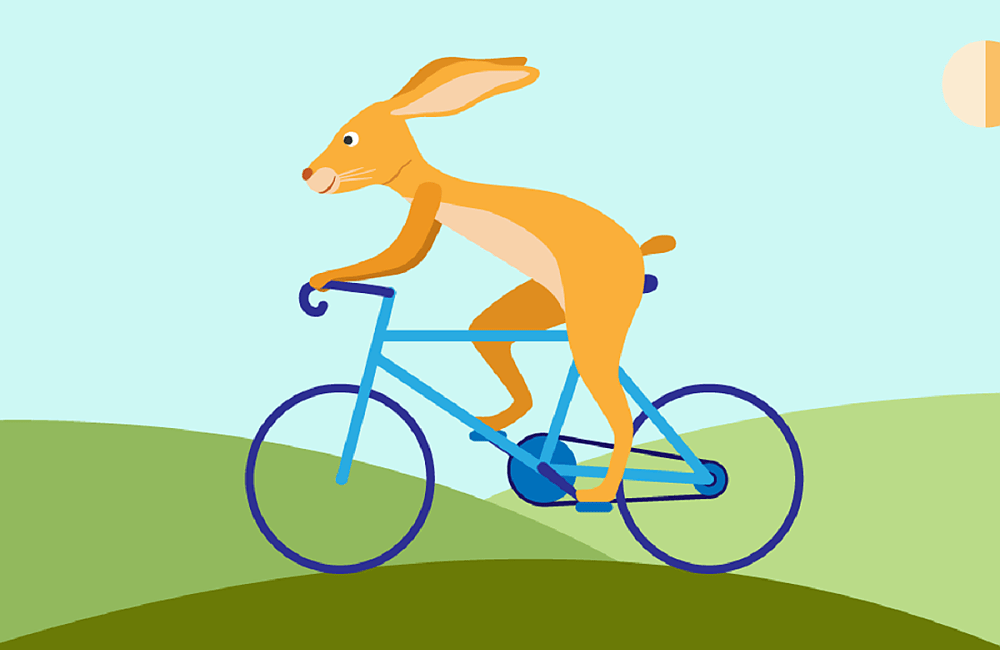 Illustration of a hare on a racing bike