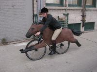 Horse bike photo